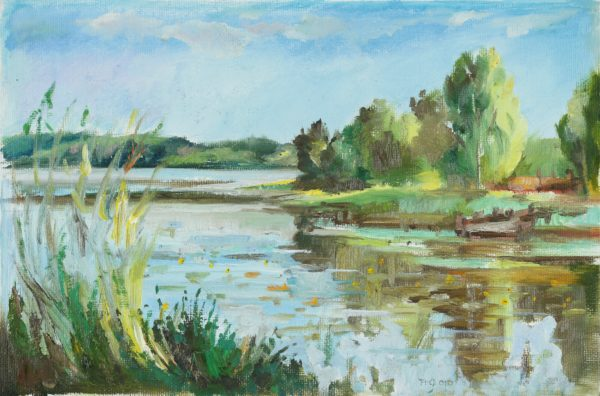 Озеро Мста маслом